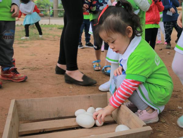 Hào hứng tham gia lớp học nhận biết các loại trứng gia cầm.