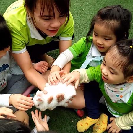 """? Dự án """"Thỏ con tinh nghịch"""" như một món quà ấm áp tháng 3 của Green Shool dành tặng các bạn nhỏ khối Thủy Tiên."""
