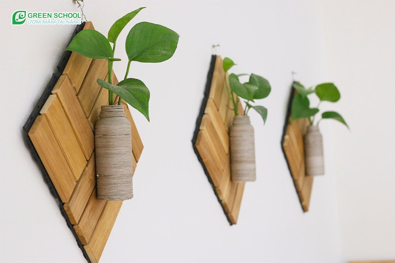 Cây xanh trang trí lớp học tại Green School Bắc Giang